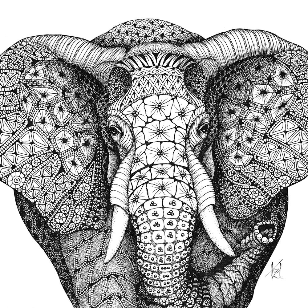 African elephant jmsx10