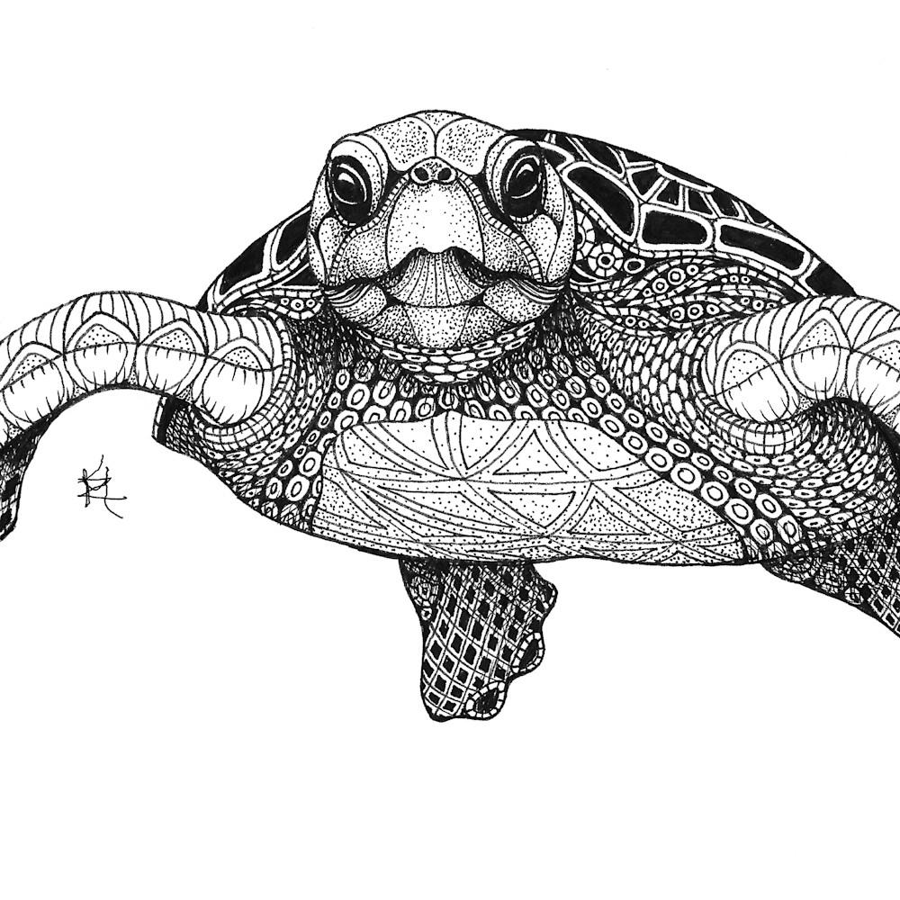 Sea turtle front tvcc2z