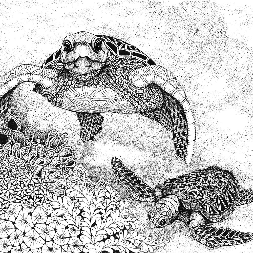 Sea turtles sdm8sk