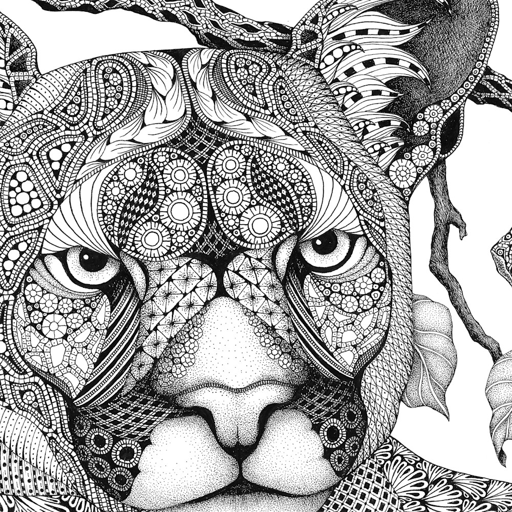 Cougar ojyniv