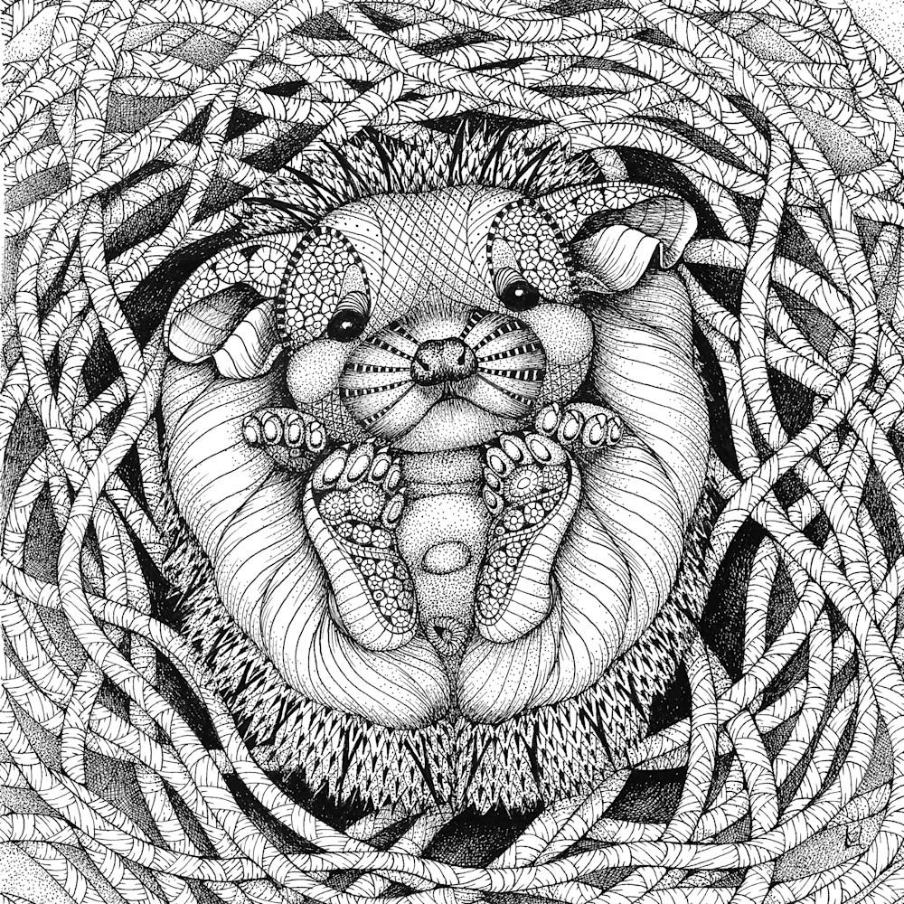 Hedgehog baby ldrlml