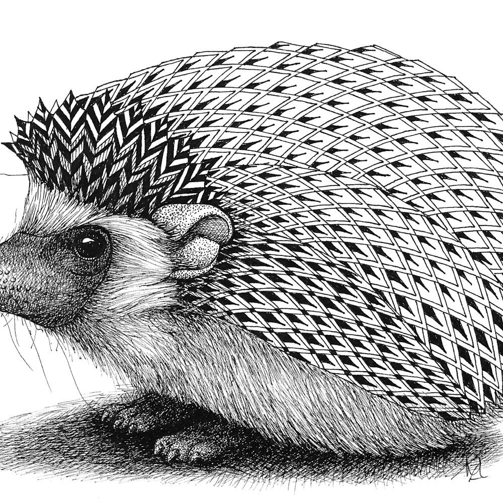 Hedgehog wbn3lx