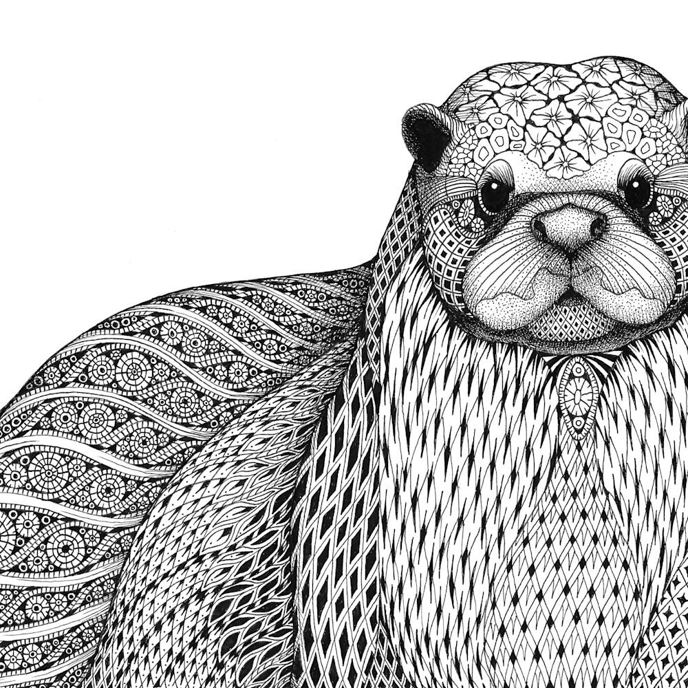 Otter xy1o9j