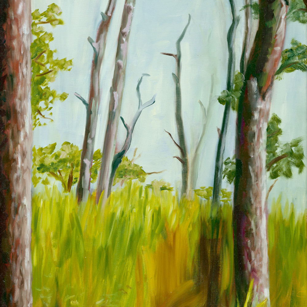 Opv art into the woods jpg file ik89ix