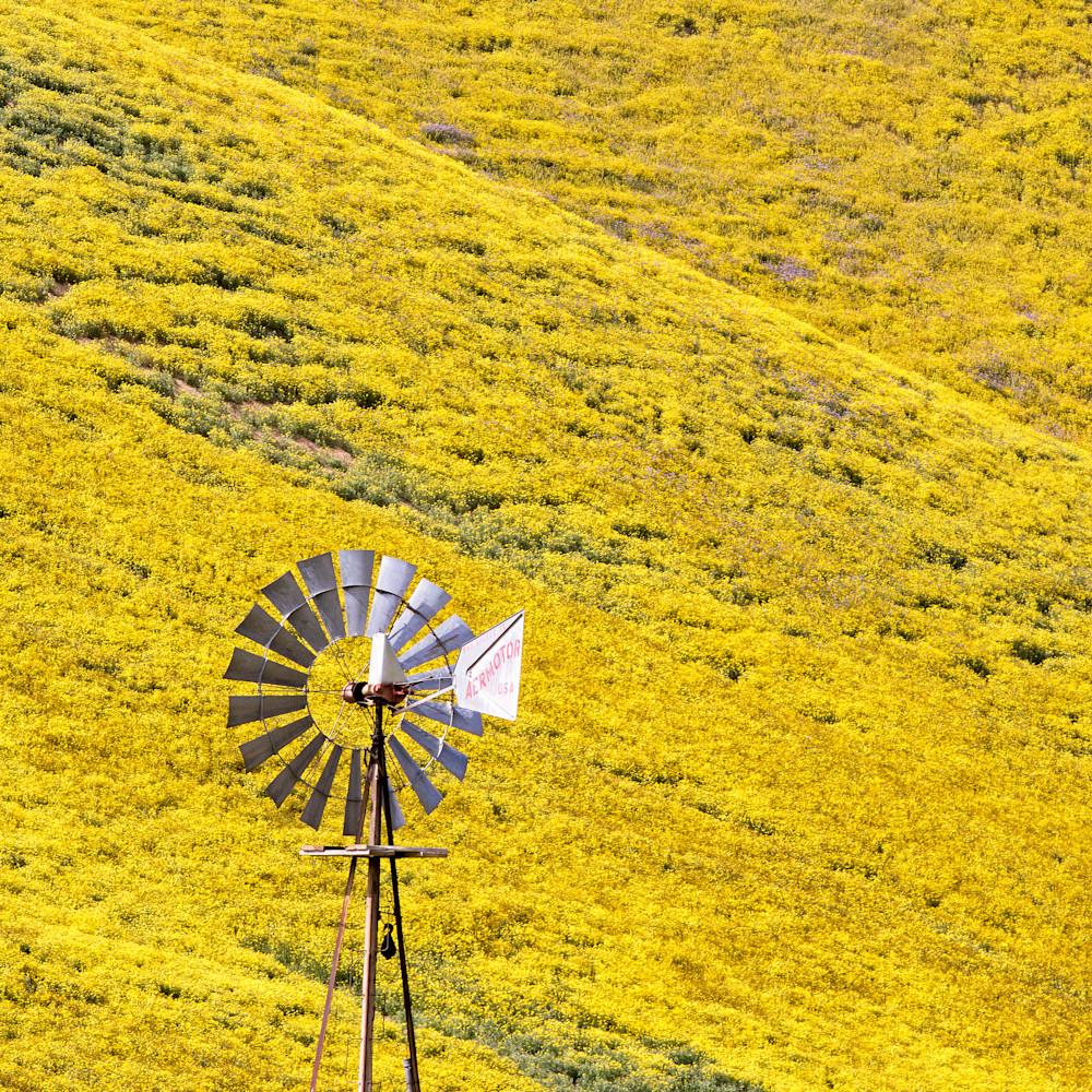 Windmill drrmwh