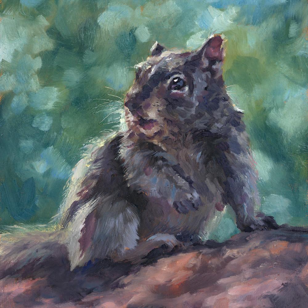 Squirrel nfylhi
