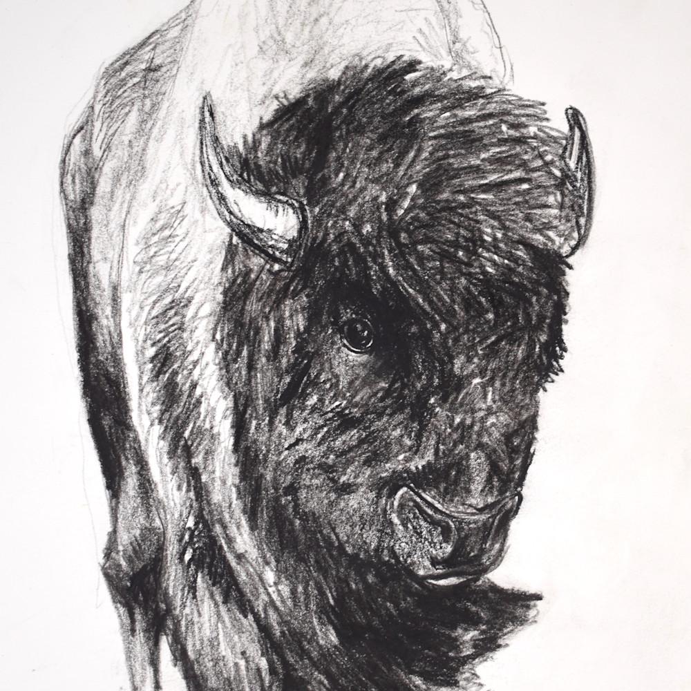 Buffalo 300dpi n3mkxi