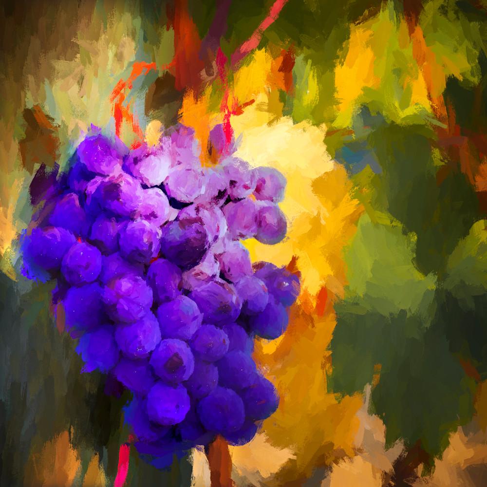 Harvest 37x37 bpprint ezsywy