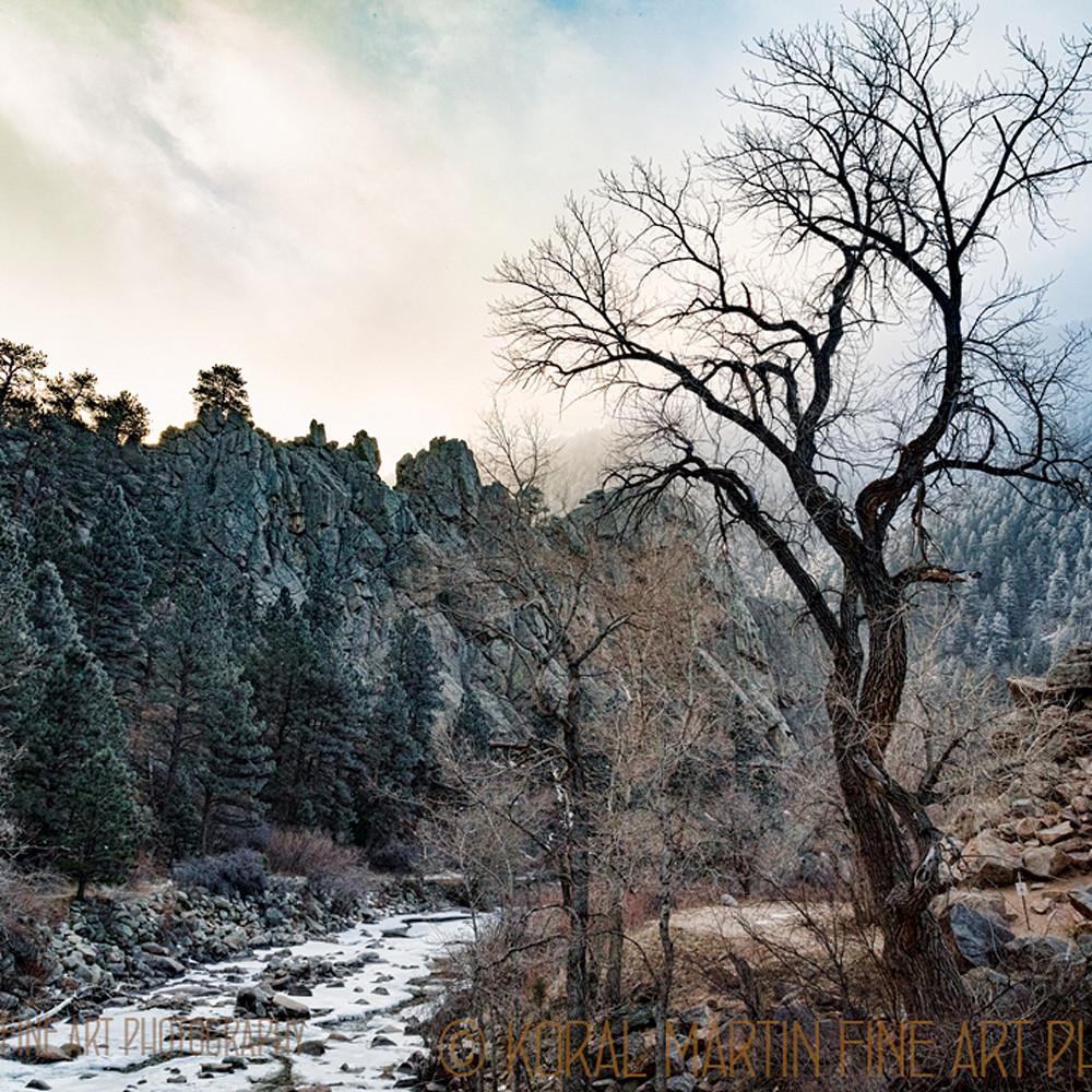 Colorado winter snow boulder creek 9103 koral martin txkrj3
