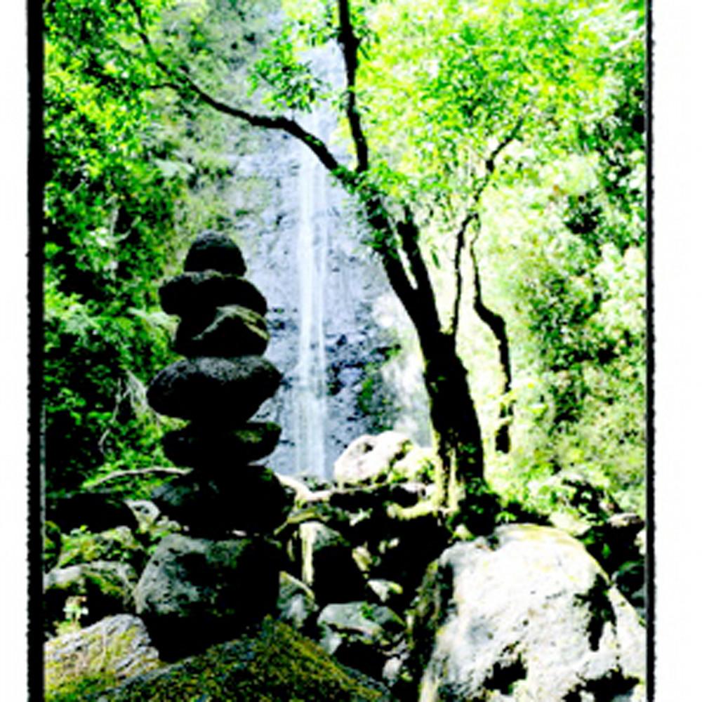 Manoa cairns 810 guq5ls