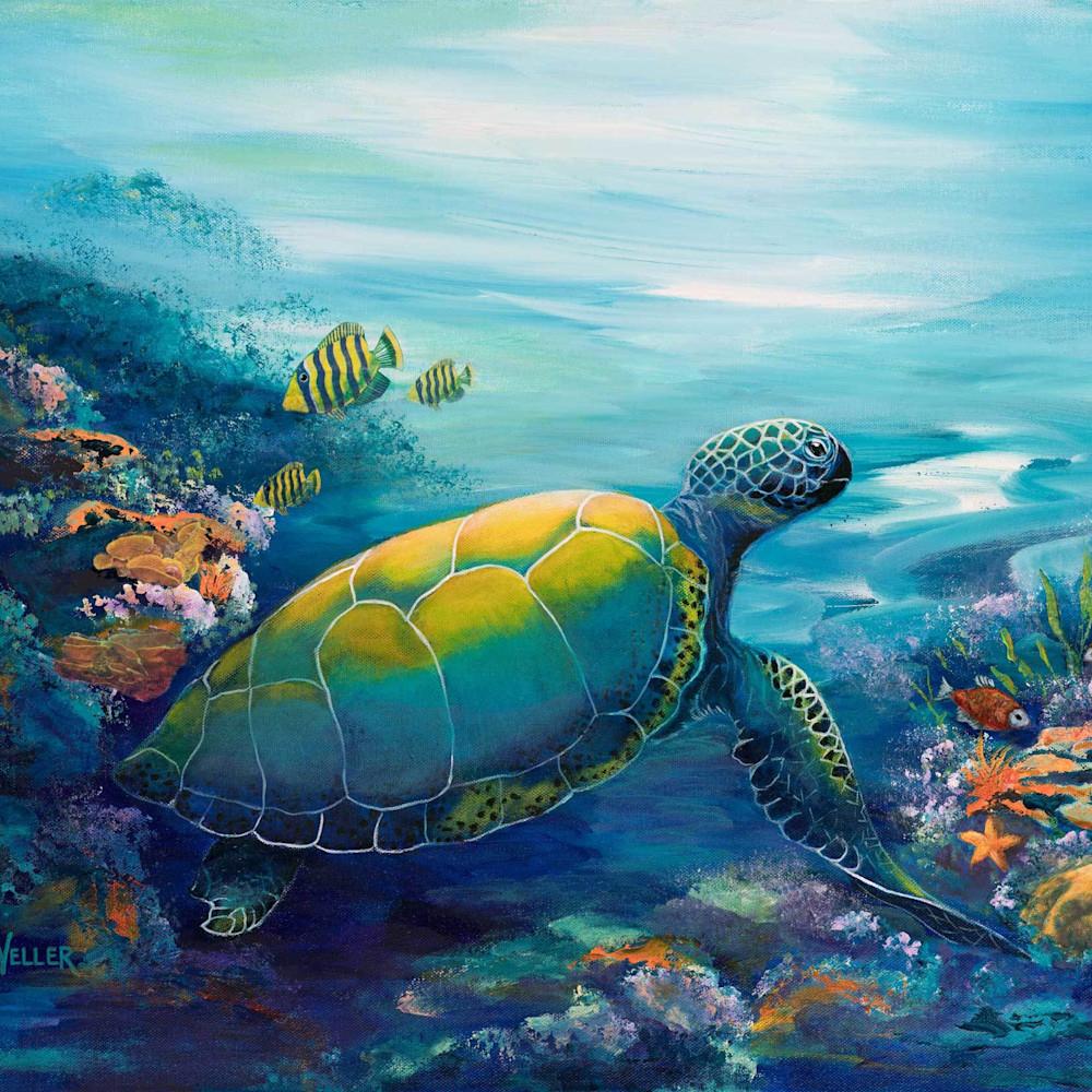 E weller 017 reef friends wjvrgh