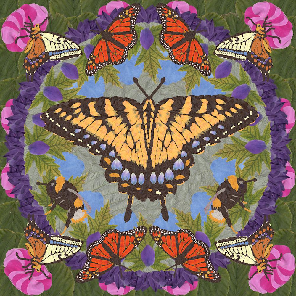 Butterflies and bees frbva2