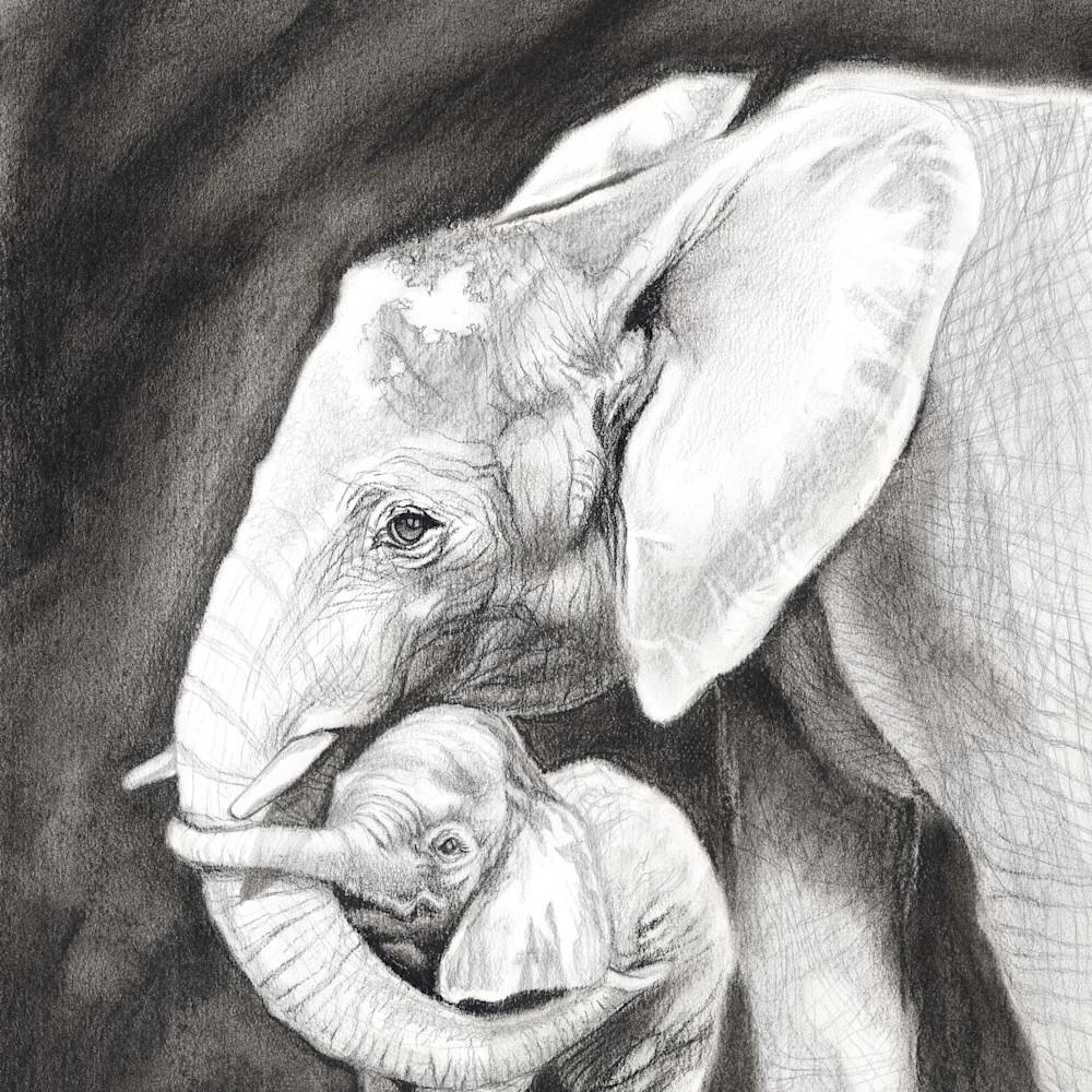 Elephantine embrace zgbog4