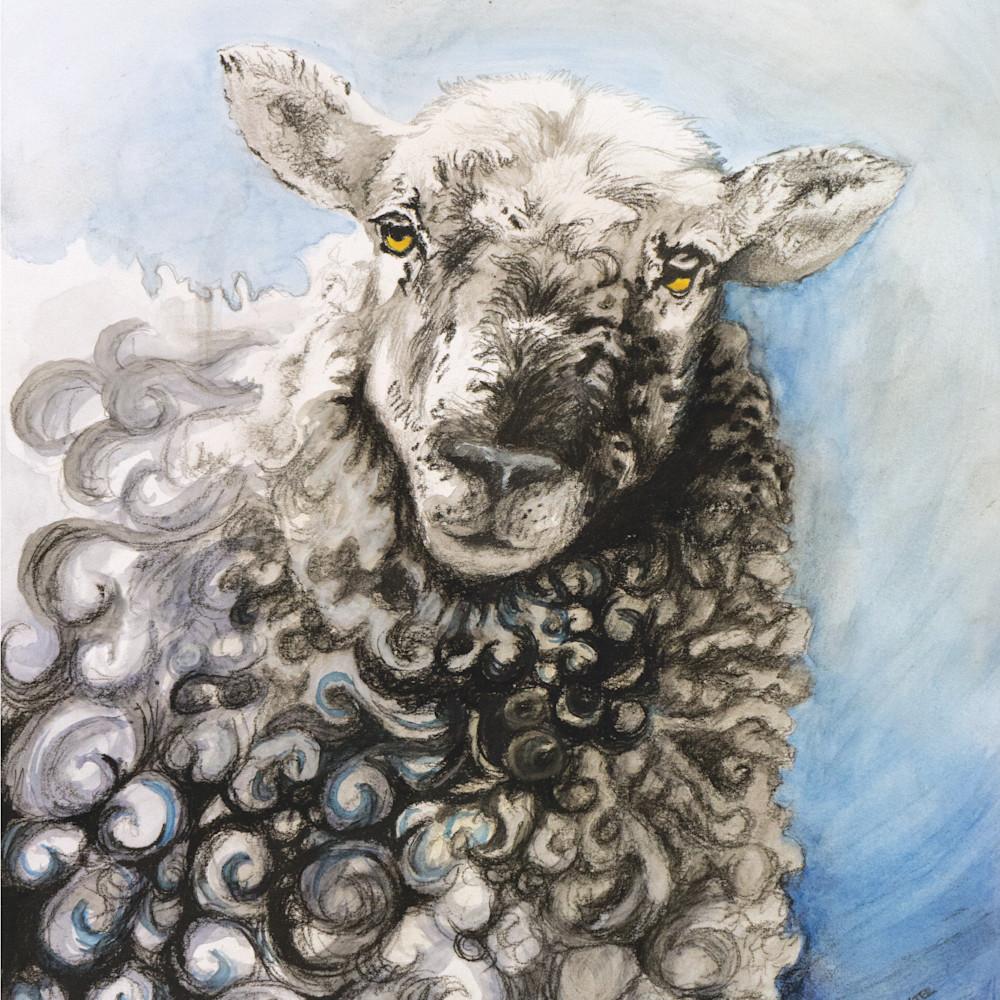 Sheep curls cropped xilyr1