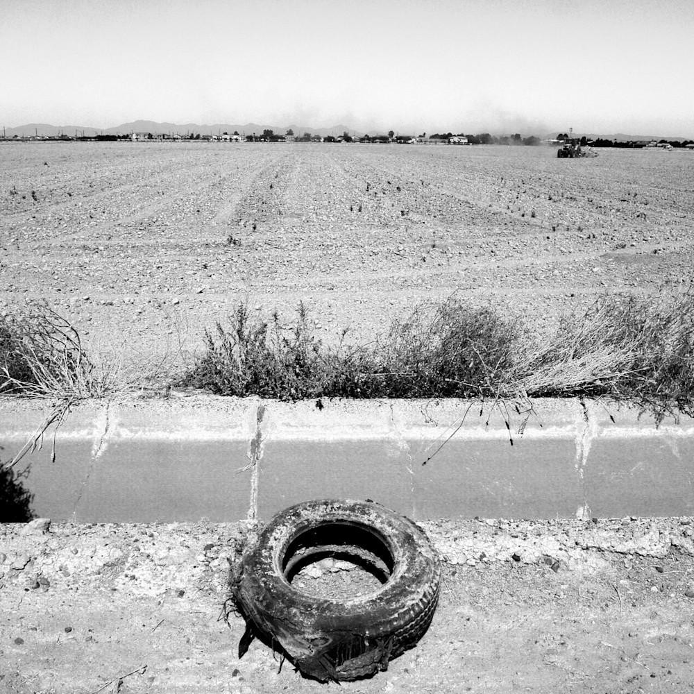 Tire field bw w0wdh2