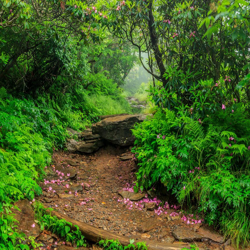 Mystic trail pxujt5