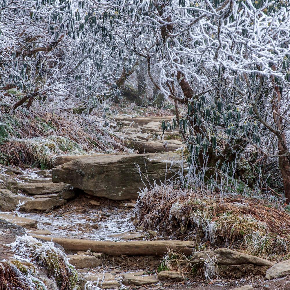 Winter trail ifjilg