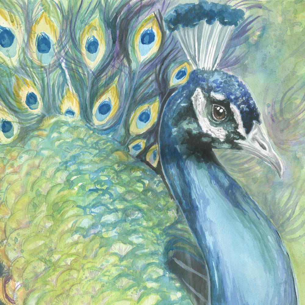Peacock merged g2q5ts