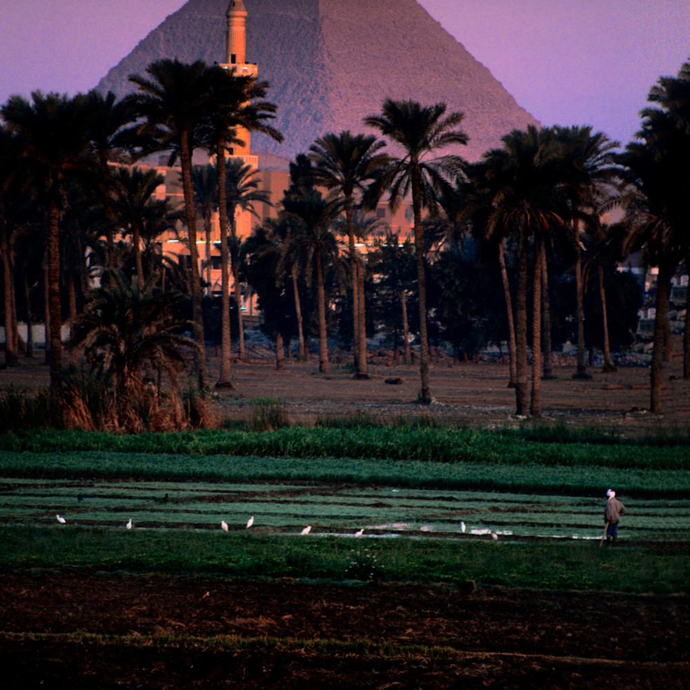 Cairo5am100 jy7bk7