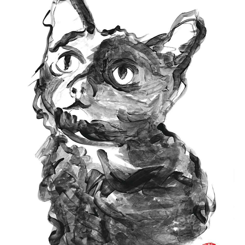 Lucy cats vertical copy copy i6pwyz