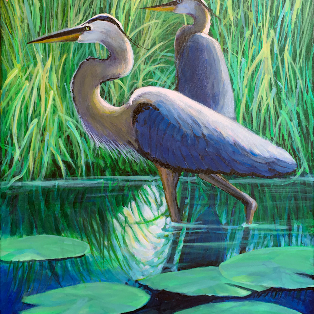 Two great blue herons 200 sqlgsl