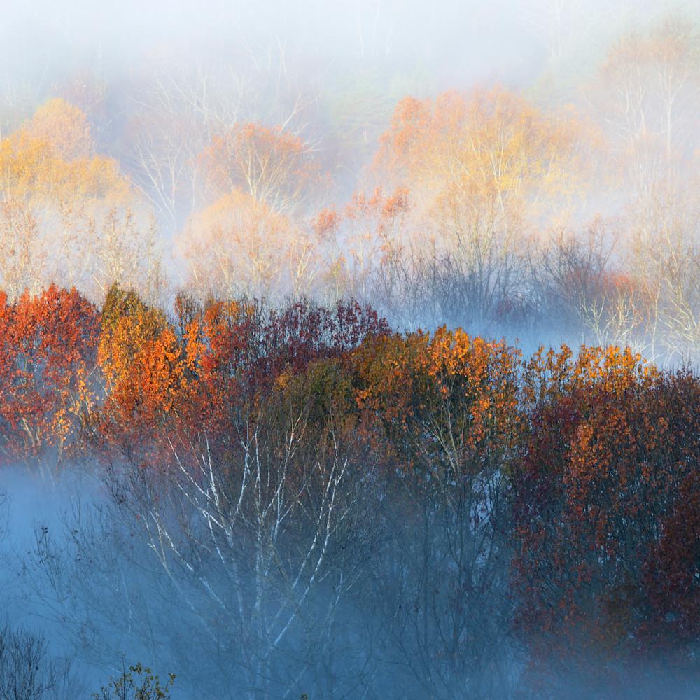 Tn autumn morning100 k4dwsh