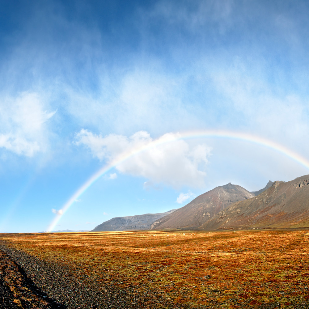 Rainbowwilderness100 yteabn