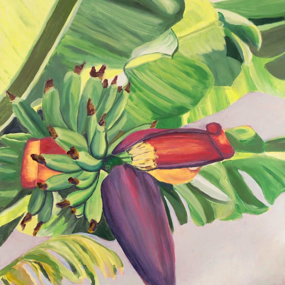 Banana flower qewsib
