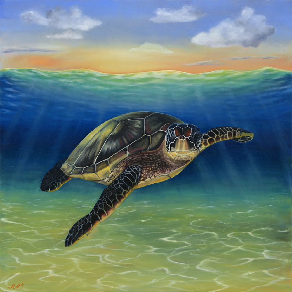 32  sea turtle oil on canvas by monica marquez gatica mmg art studio lbrsyn