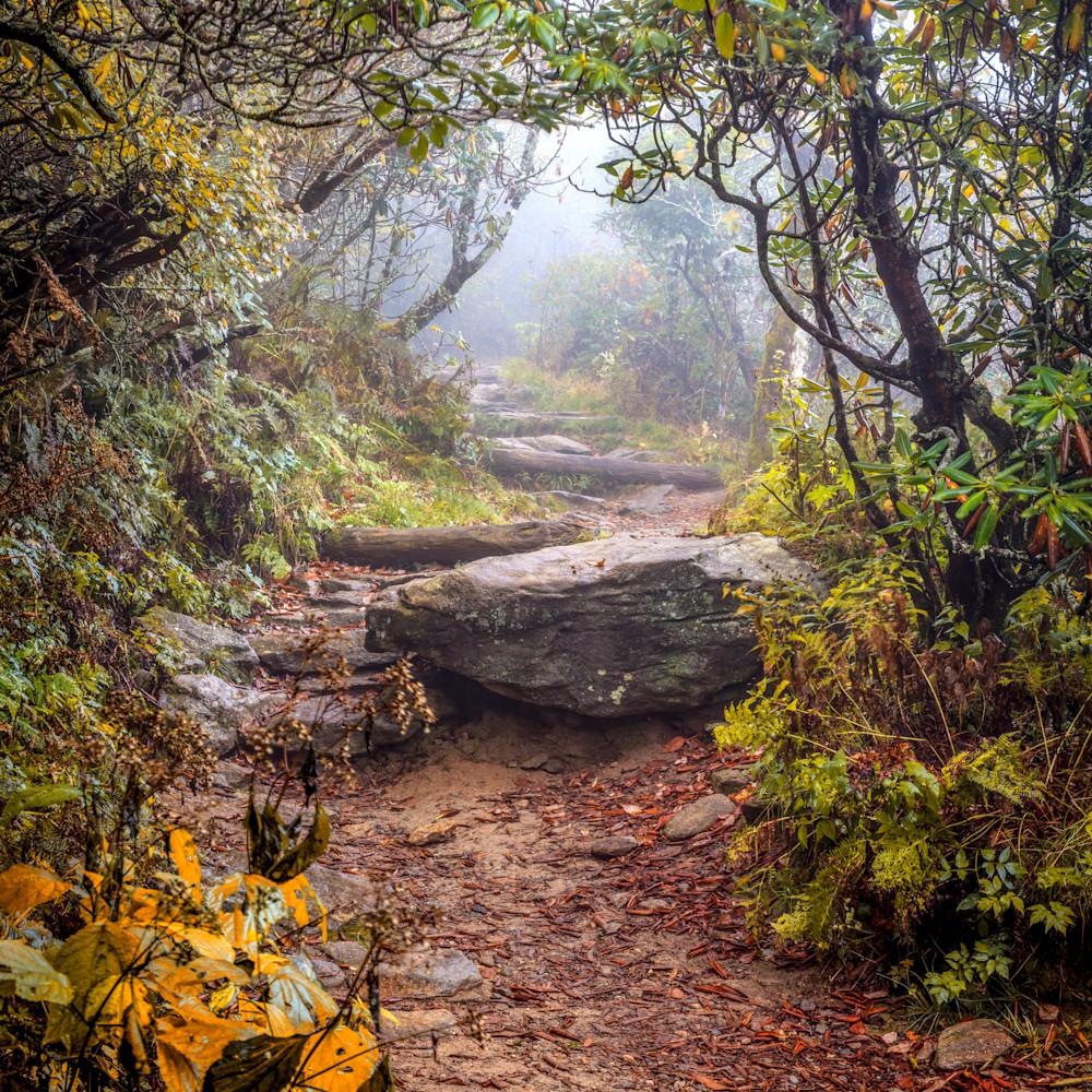 Autumn trail zgqcxs