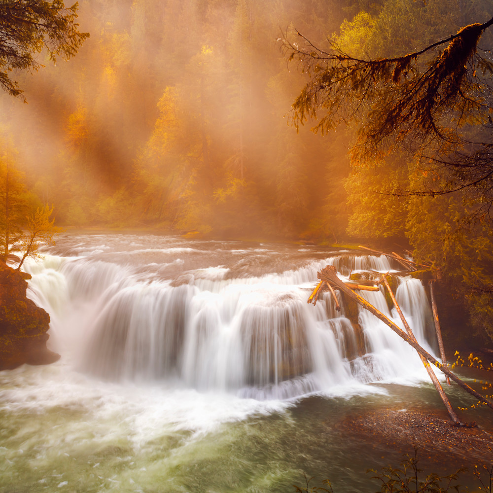 Lower lewis falls asf gallery end9kn