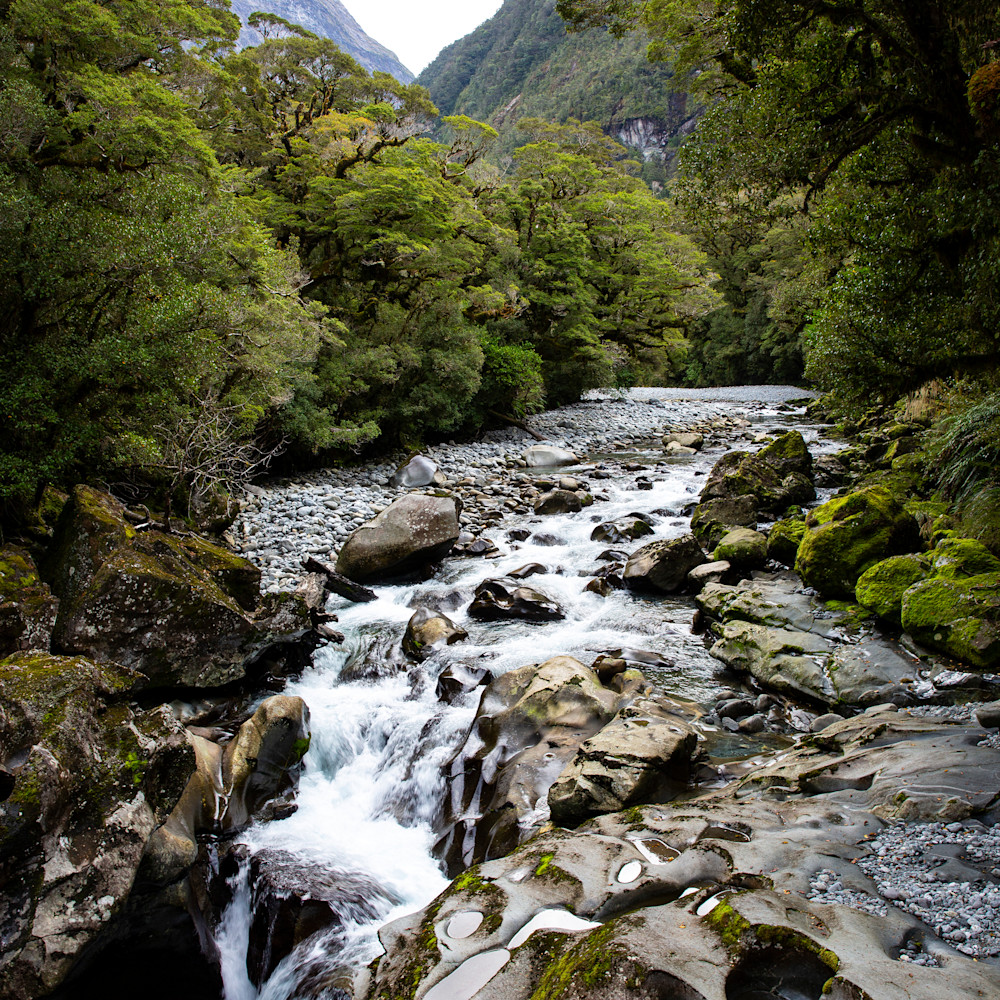 Fiordland river dmppjl