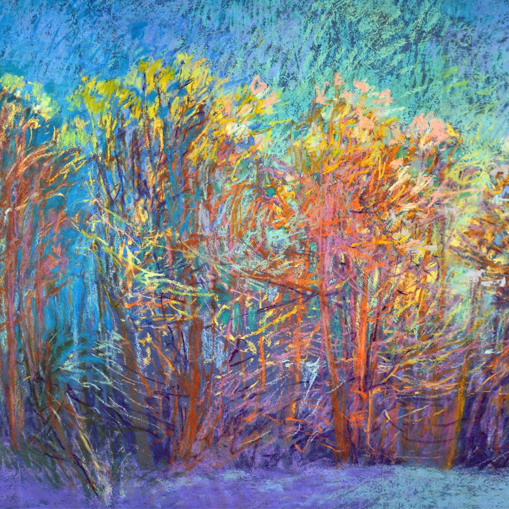 Sparklyin the woods devdan