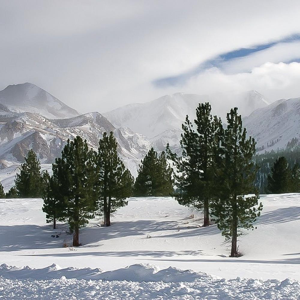 Four trees easter sierras w8t3jt