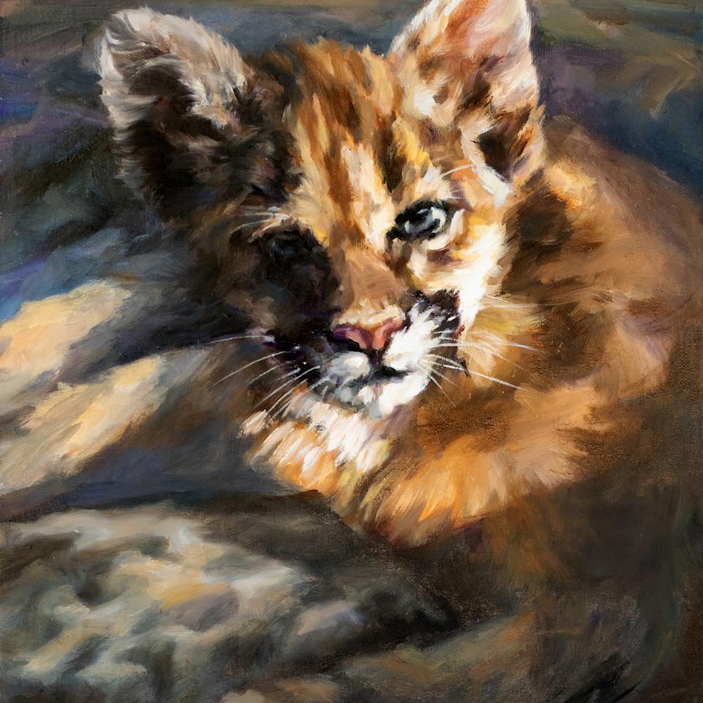 Cougar new nqtscd