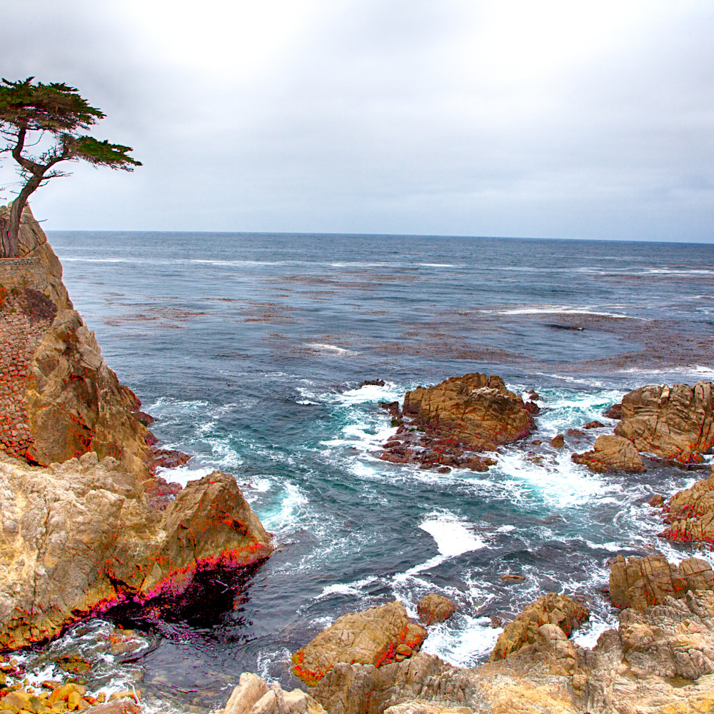 17 mile drive 1 ayglro