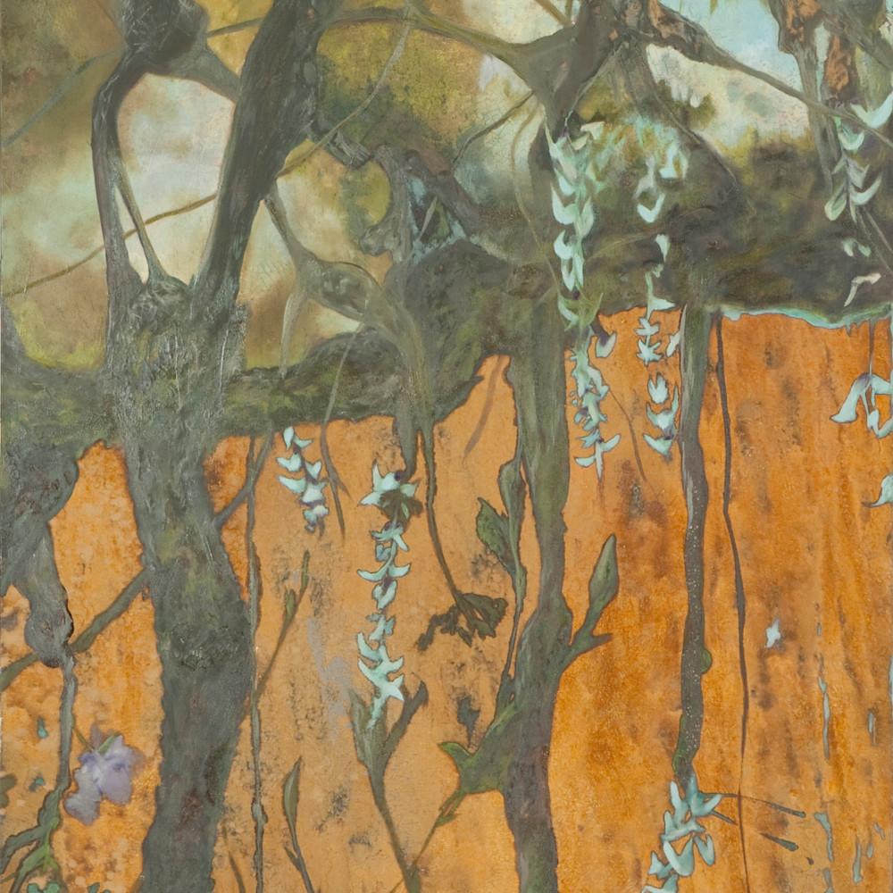 22shinerkl aerial roots 22 lrq9ce