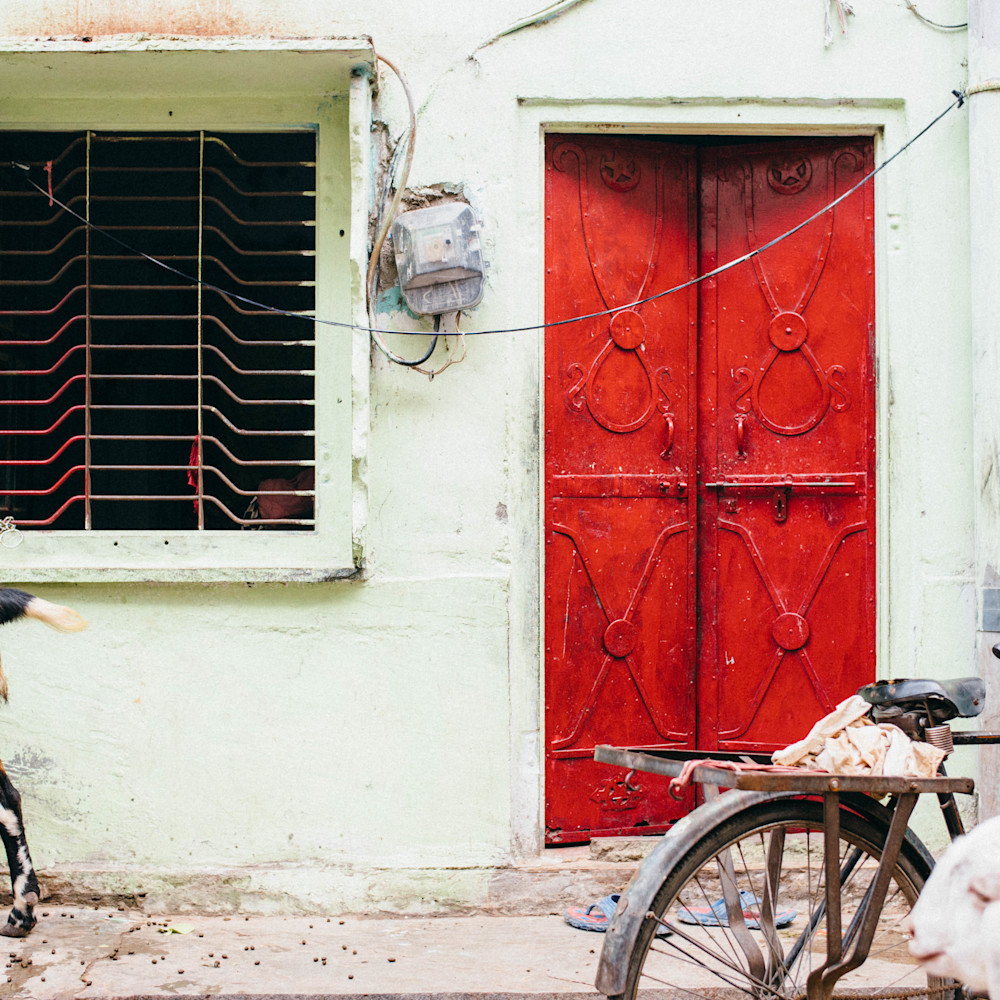 Jaipur red fqxtgx