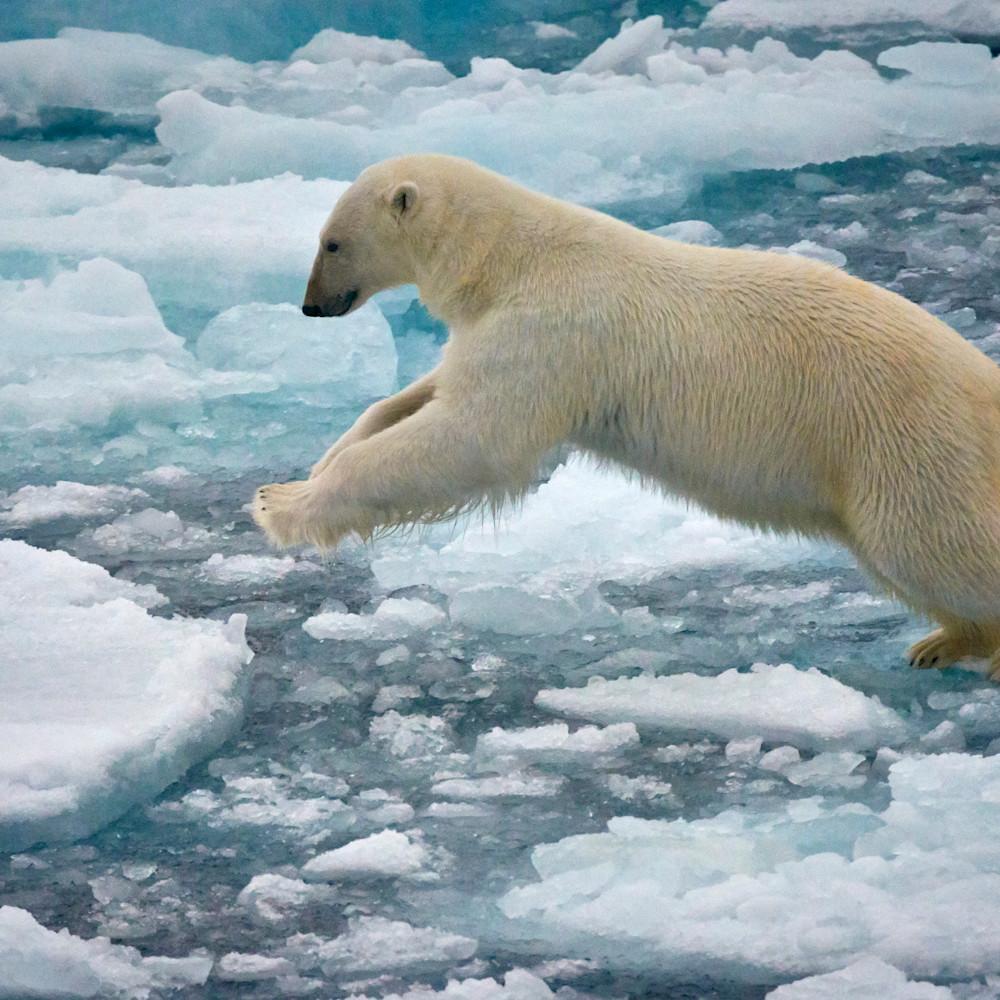 dsc3640 svalbard polar trip jnn6sj