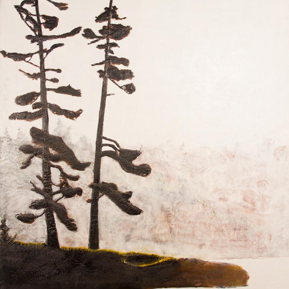 Two trees 0120 jvvzib