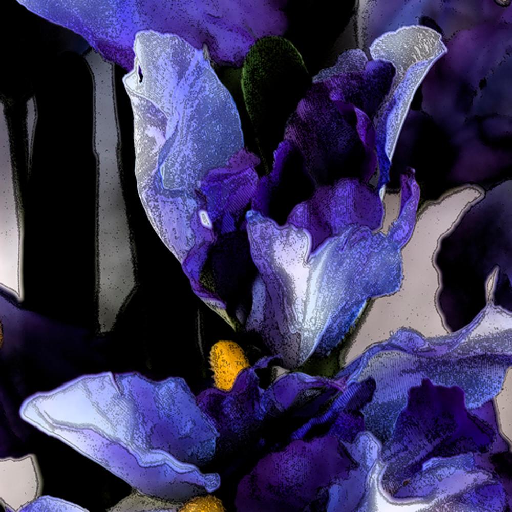 Irises   ink outlines qg6joo