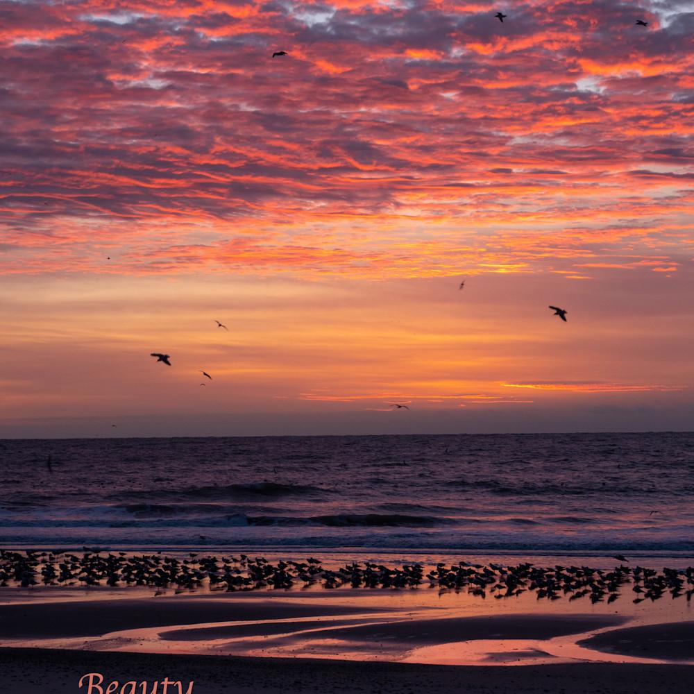 Beauty sunrise sea dsc6779q xtunnj