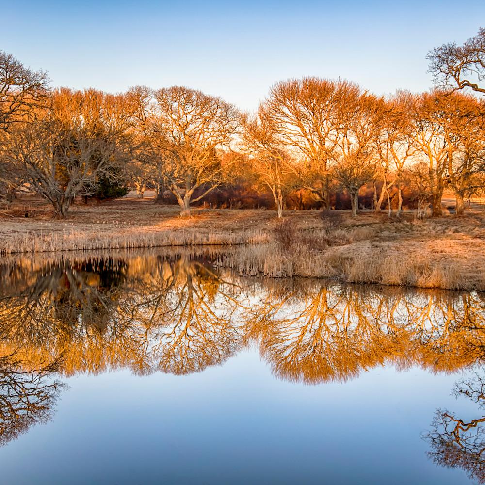 Turtel brook winter reflections 1 fqfenv