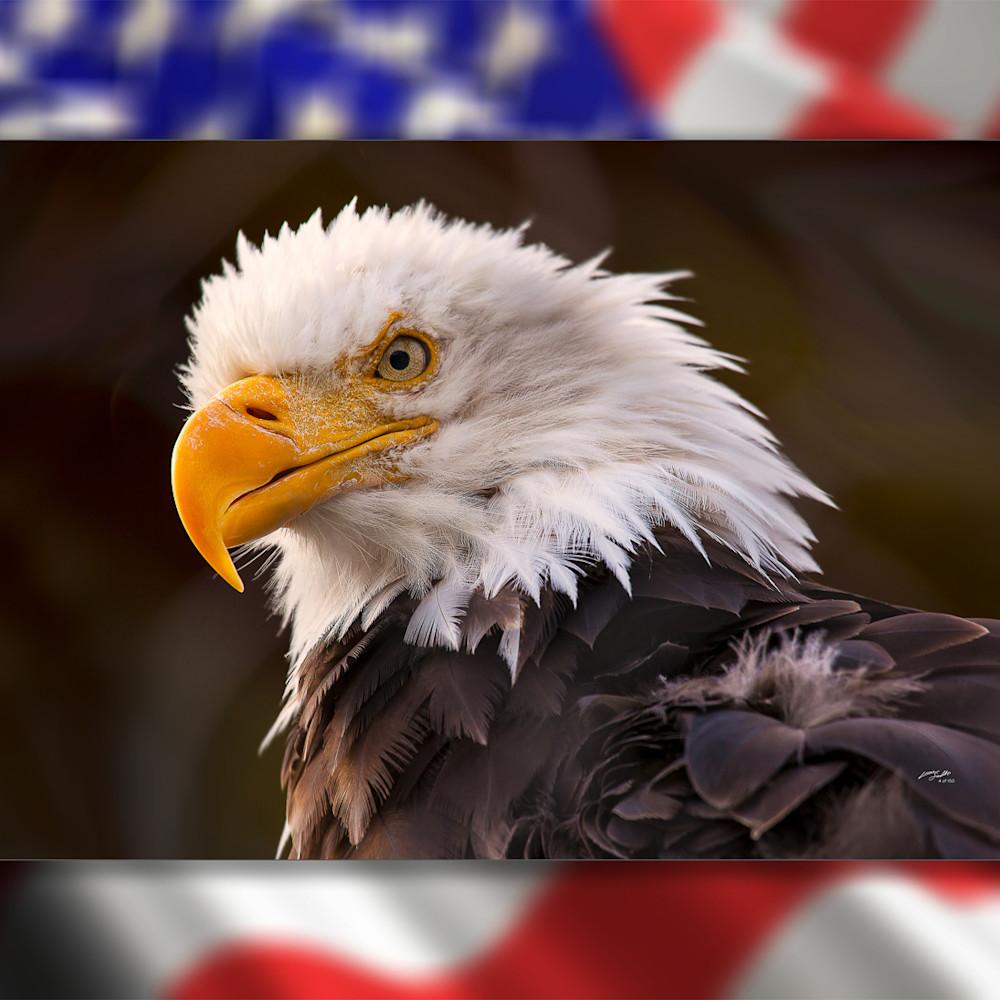 Eagle 3d 35 drusae