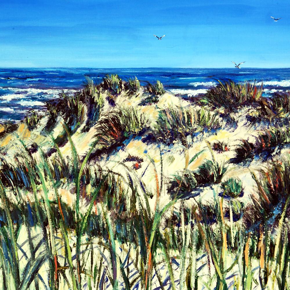 Mphillip   winter dunes hvnlaq