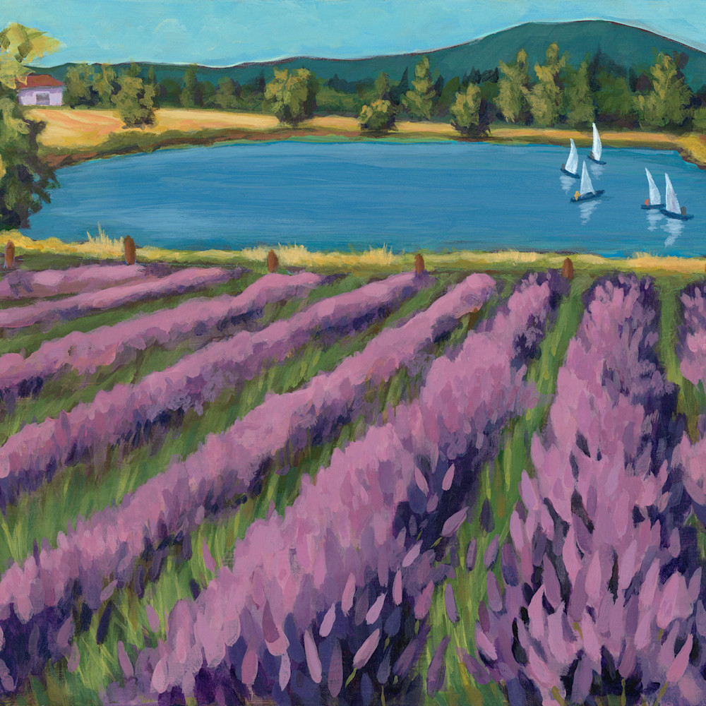 Lavender field with sailboats xbxtvq