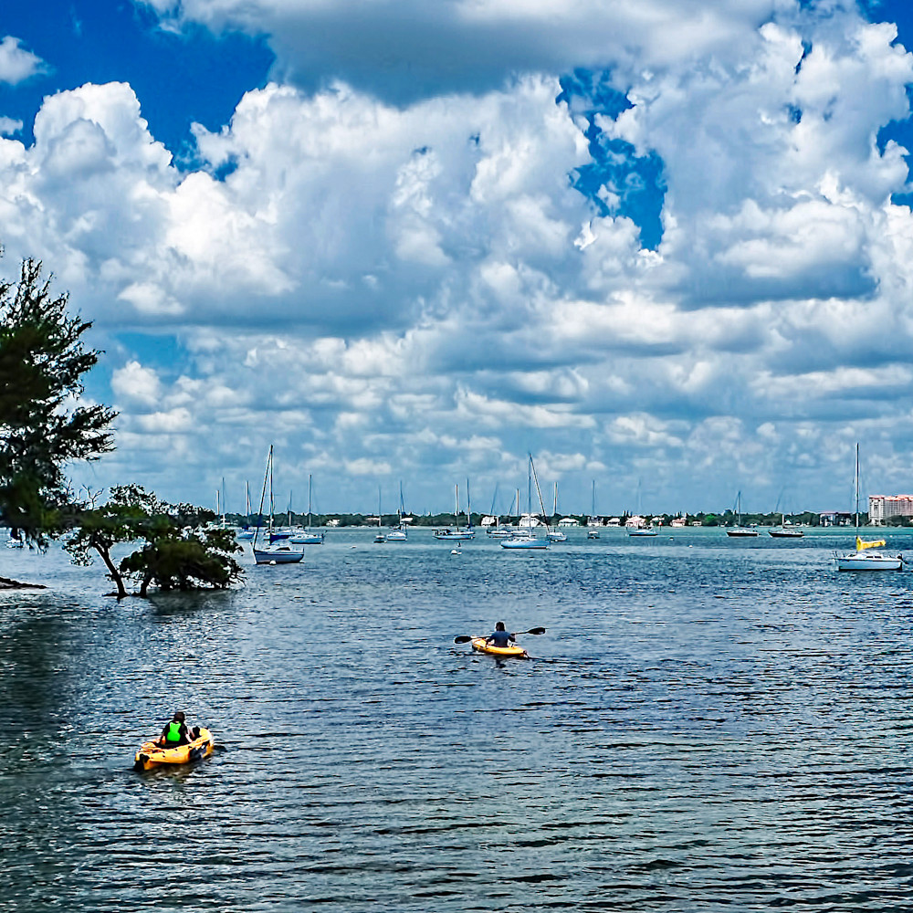 L015 kayaking on sarasota bay u8xsql