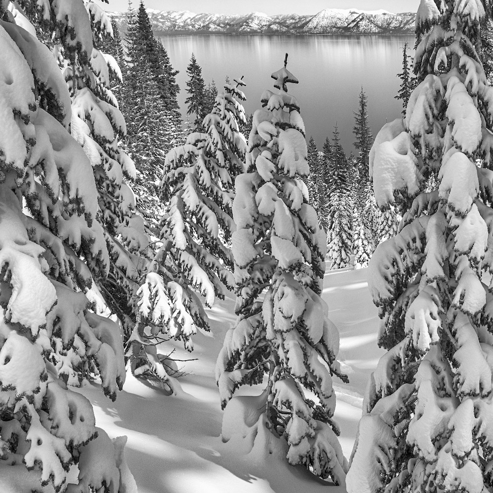 Snowy calm tahoe v bw tadutk