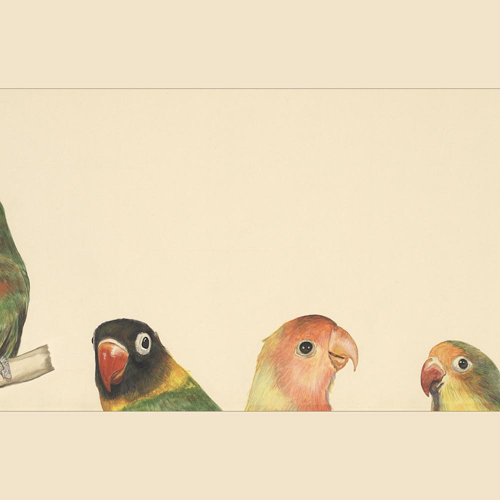 Dee van houten lovebirds giclee 2020 svwiqd