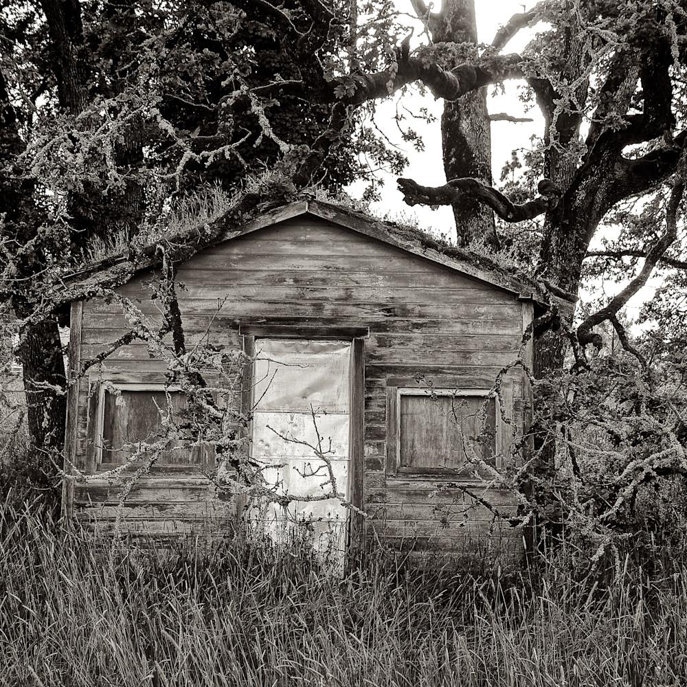 Delapidated shack in goshen oregon ouumn8
